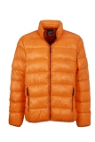 Warme Winter Daunenjacke mit Stehkragen in sportlichem Style